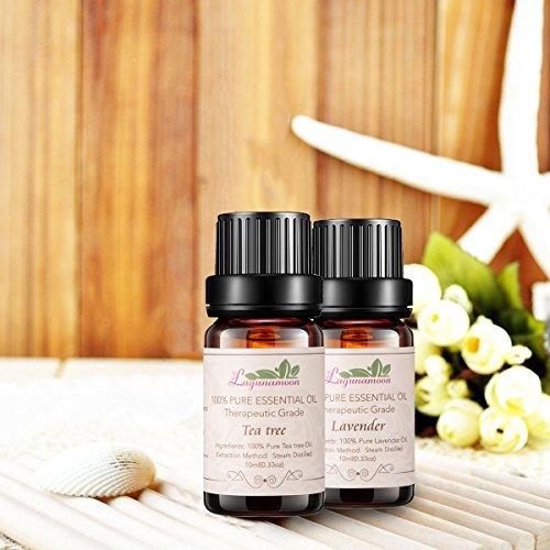 Aromatherapy Essential Oils Gift Set Top 6 Premium Therapeutic Grade Oils Lavender Tea Tree Eucalyptus Lemongrass Orange Peppermint Essential Oils