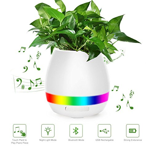 Wireless Garden Speaker With Light - 2