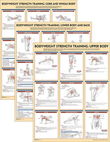 Bodyweight Strength Training Anatomy Poster Series