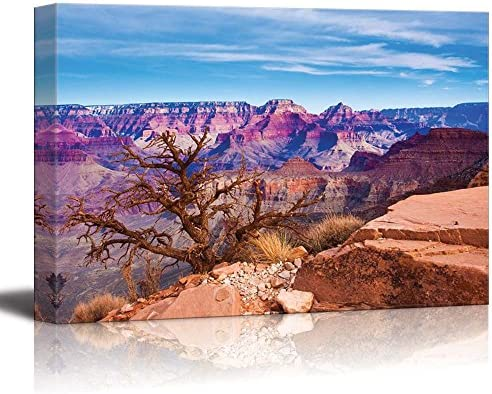The World Famous Grand Canyon National Park Arizona USA Home Deoration Wall Decor