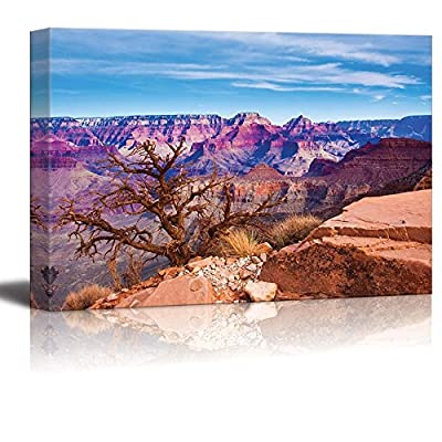 Canvas Prints Wall Art - The World Famous Grand Canyon National Park,Arizona,USA | Modern Home Deoration/Wall Art Giclee Printing Wrapped Canvas Art Ready to Hang - 24