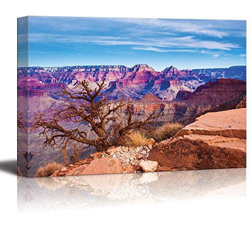 The World Famous Grand Canyon National Park Arizona USA Home Deoration Wall Decor ing