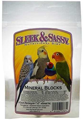 Sleek & Sassy Mineral Blocks (1