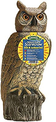 Dalen Gardeneer 100055888 Gardeneer by Dalen Solar Action Owl Natural Scarecrow Device, 18in, 18 in, Yellow