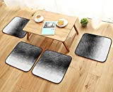 Jiahonghome Comfortable Chair Cushions Fluffy Texture of Fur of Wild Animals of Black Color for Abstract Backgrounds Reuse can be Cleaned W17.5 x L17.5/4PCS Set
