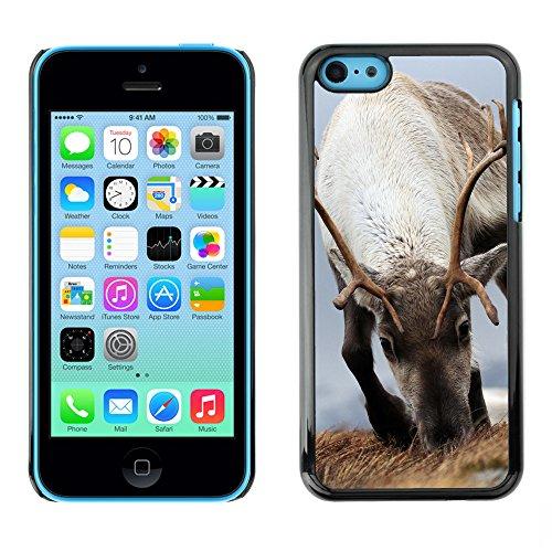 Premio Sottile Slim Cassa Custodia Case Cover Shell // F00008845 Reindeer Cairngorms // Apple iPhone 5C