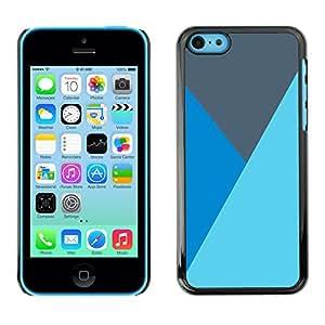 X-ray Impreso colorido protector duro espalda Funda piel de Shell para Apple iPhone 5C - Lines Baby Blue Gray Mountain