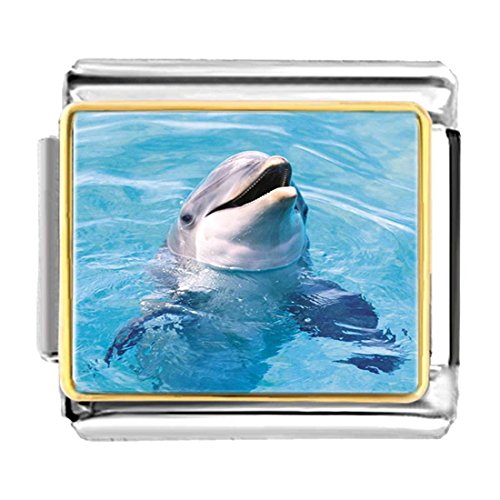 - GiftJewelryShop Gold Plated Happy Cute Dolphin Bracelet Link Photo Italian Charms