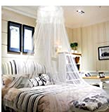 HIG Mosquito Canopy Lace Dome Netting Bedding, Full, White