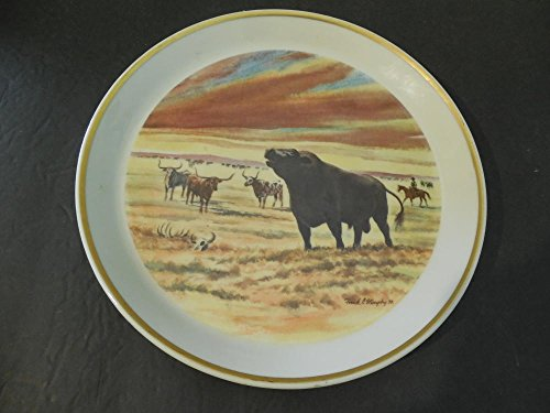 Shenango China by interpace 1873-1973 100 years of angus in america