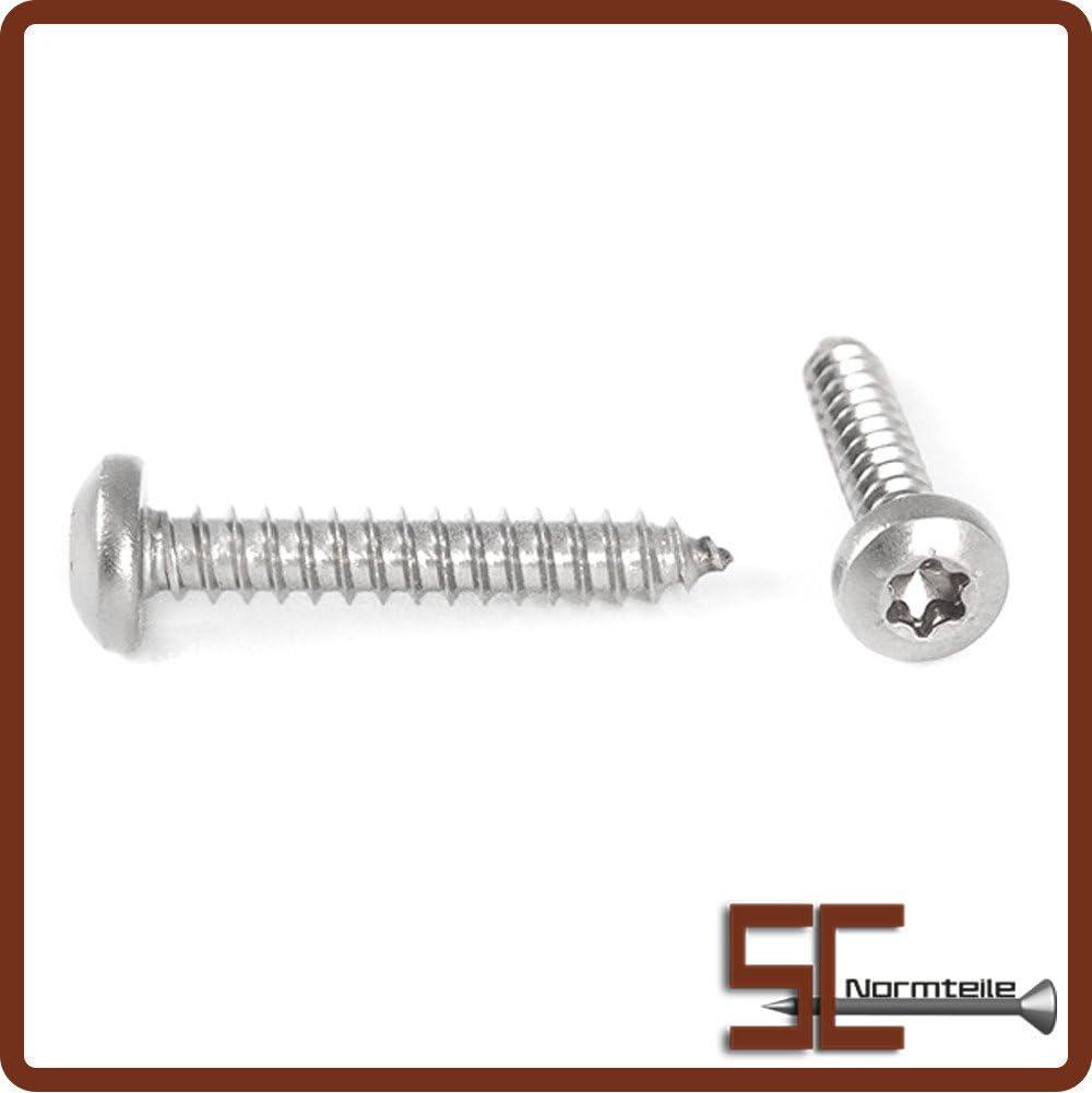 ISO 14585 - Edelstahl A2 V2A 2,2x22 - - Form C Innensechsrund Antrieb TX - - DIN 7981 mit Spitze SC7981 Blechschrauben mit Linsenkopf 40 St/ück