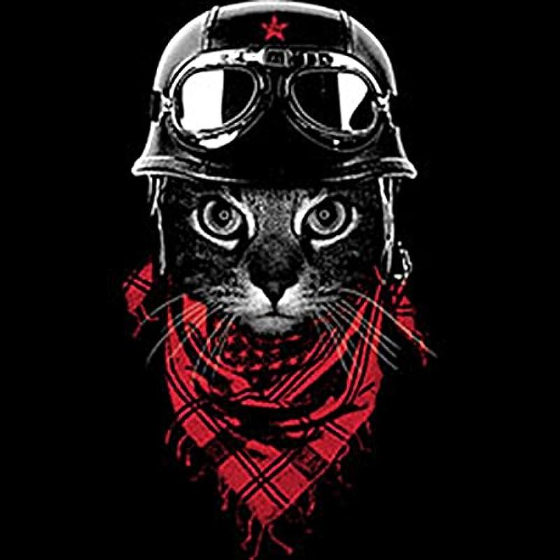 Zip, kurtka z kapturem, bluzy kurtki, Zip Hoody z zamkiem błyskawicznym – Coole kot – acventurer Cat: Odzież