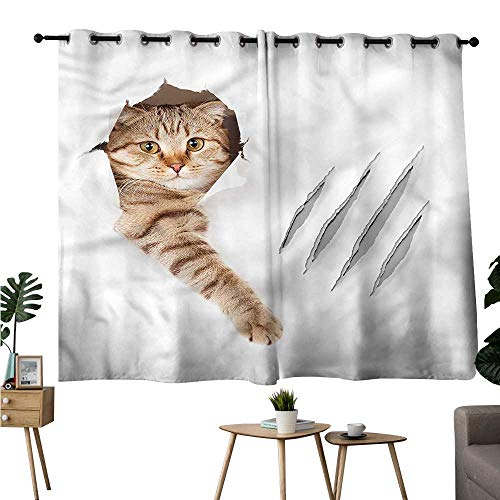 Diycon Curtain for Kids Animal Funny Cat in Wallpaper Hole Durable W55 xL45 Suitable for Bedroom Living Room Study,etc