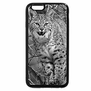 iPhone 6S Case, iPhone 6 Case (Black & White) - Cat on Tree