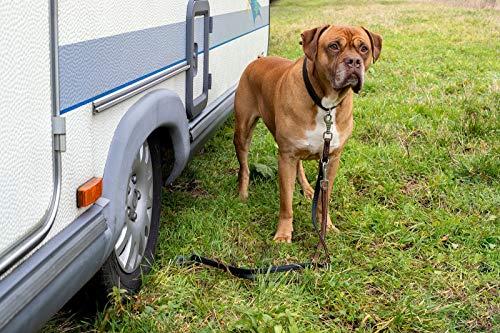 514uCWoPCcL DogSitter - mobiler Ankerpunkt für Ihren Hund (Camping Wohnmobil Wohnwagen) (SET1)