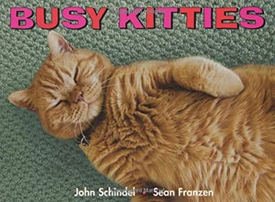 Busy Kitties A Busy Book by Tricycle Press