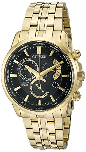 Citizen Eco-Drive Men's 'Perpetual Calendar' Quartz Stainless Steel Casual Watch, Color: Gold-Toned (Model: BL8142-50E)