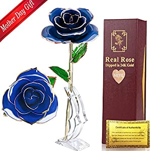24k Gold Rose Red Long Stem Gold Dipped Rose Forever Roses with Crystal Stand in Box Best Romantic Gift for Mom Wife Girls on Mothers Day, Anniversary, Birthday, Treating Yourself, Valentine's Day 79