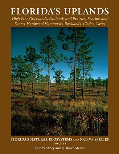 Floridas Uplands  Floridas Natural Ecosystems And Native Species