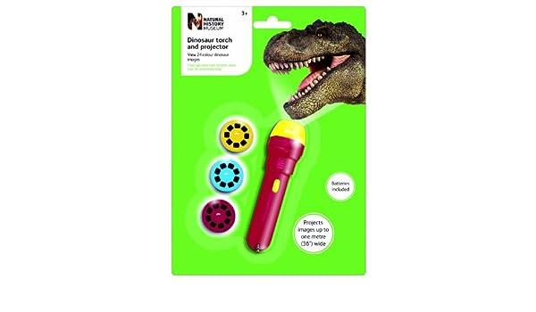 6 x el Museo de Historia Natural dinosaurios linterna y proyector ...