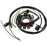 DB Electrical APO4001 Stator Coil For Polaris Magnum 425 95 96 97 98 1995 1996 1997 1998, Sportsman 400 01 02 2001 2002, 500 96 97 1996 1997,Xplorer 1997 97,335 Sportsman 1999 2000 99 00