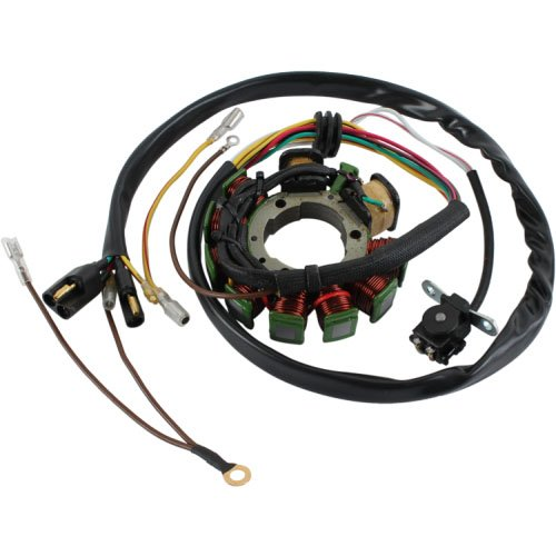 (DB Electrical APO4001 Stator Coil For Polaris Magnum 425 95 96 97 98 1995 1996 1997 1998, Sportsman 400 01 02 2001 2002, 500 96 97 1996 1997,Xplorer 1997 97,335)