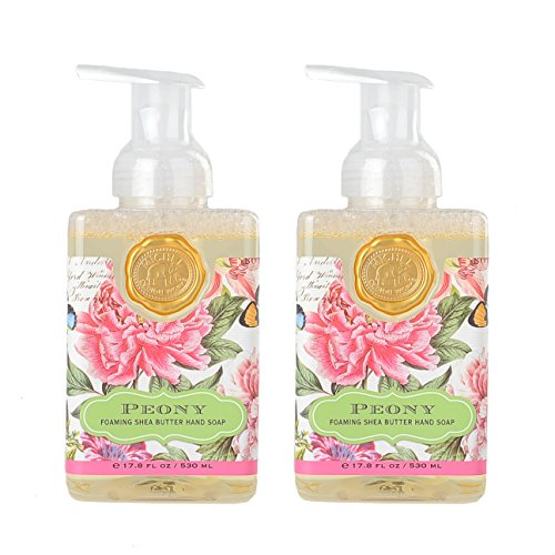 Michel Design Works Foaming Hand Soap, 17.8-Ounce, Peony Bundle 2 Pack