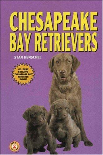 Chesapeake Bay Retrievers  KW Dog