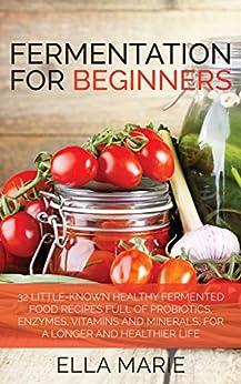 FERMENTING Fermentation Beginners Fermented Probiotics ebook product image
