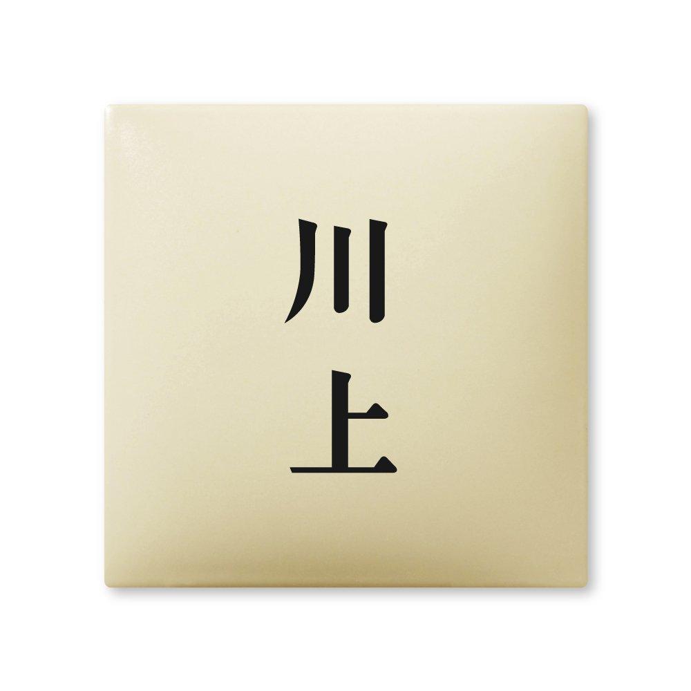 丸三タカギ 彫り込み済表札 【 川上 】 完成品 アークタイル AR-1-2-2-川上   B00RFASF4G