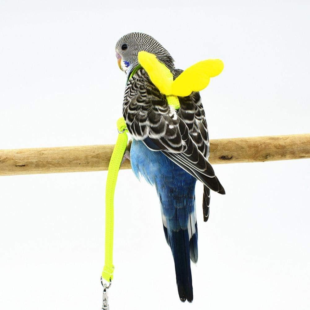 Lacyie 1 Pieza Arnés y Correa para pájaros para Mascotas Loro Anti ...