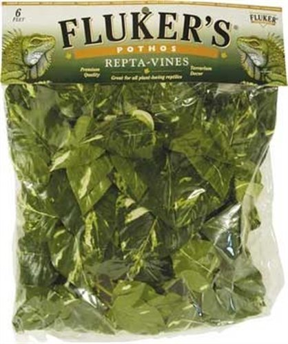 Fluker's Repta Vines-Pothos for Reptiles and Amphibians (Limited Edition)