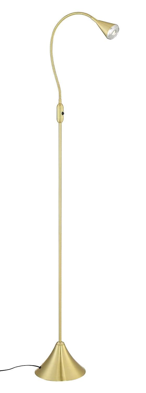 HomeFocus Gold LED Floor Lamp Light,Living Room Lamp Light,Bedroom Lamp Light,Metal,Flexible Gooseneck 4.2-5W LED,3000K,Energy Efficient Super Bright for Home and Hotel.