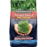 Pennington 100526673 Smart Seed Sun and Shade Grass Seed, 20 LBS