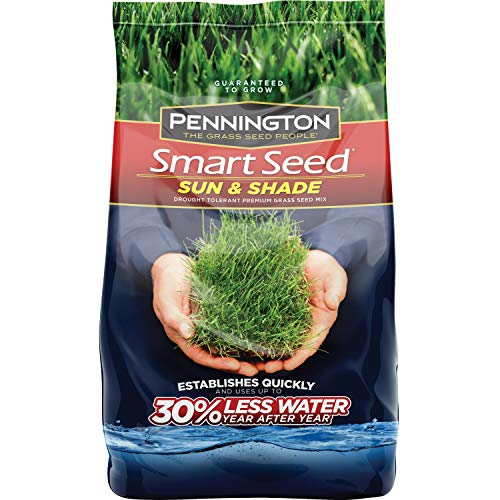 Pennington 100526673 Smart Seed Sun and Shade Grass Seed, 20 - One Mix Seed