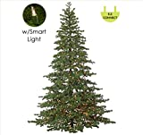 Northlight 7.5' Layered Pine Instant Power Technology Single Plug Christmas Tree - Multi LED Lights
