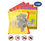 CARMAXS [5 Pack] Mouse Traps Glue Board,Rats Trap,Extra Sticky Rodents Glue Traps and Peanut Butter with Large Capture Area,Perfect Use for Indoor and Outdoor (5)