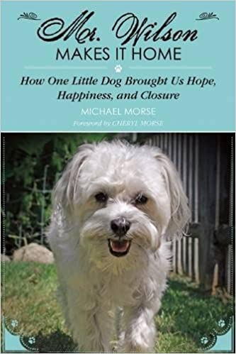 Mr Wilson Makes It Home How One Little Dog Brought Us Hope Happiness And Closure Michael Morse Cheryl 9781629145730 Amazon Books