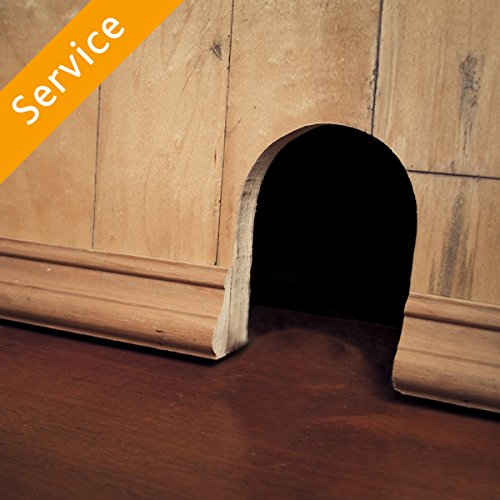 Rodent Inspection and Report - Under 2,000 sq ft by Amazon Home Services