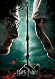 Trends International 8.25x11.75 MDF-Harry Potter-Deathly Hallows 2 Wall Poster, 8.25' x 11.75', Multicolor