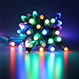 ALITOVE WS2811 12mm Diffused Digital RGB LED pixel string light Individually Addressable round LED module 50pcs/string IP68 Waterproof DC 5V