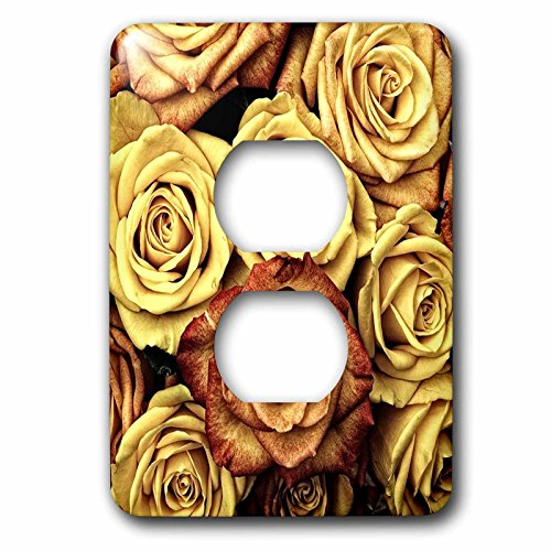 3dRose (LSP_245072_6 2 Plug Outlet Cover Image of Close Up of Roses in Gold and Burnt - Umber Two Light Burnt