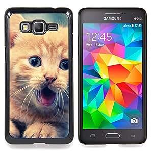 """Lindo Gatito anaranjado"""" - Metal de aluminio y de plástico duro Caja del teléfono - Negro - Samsung Galaxy Grand Prime G530F G530FZ G530Y G530H G530FZ/DS"""