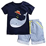 Fiream Little Boys' Cotton Clothing Short Sets(2001TZ,3T)