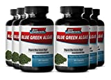 Pure Immune System, Fatigue and Digestion Enhancement - Klamath Blue Green Algae 500mg (6 Bottles 360 Capsules)