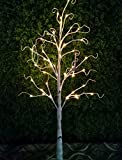 Bolylight Birch Tree 4ft 48L LED Decorations Lighted Tree Valentines Day Decor for Bedroom/Party/Office/Home, Warm White