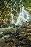 Grizzly Falls Canvas Print by Michael Tidwell Photography