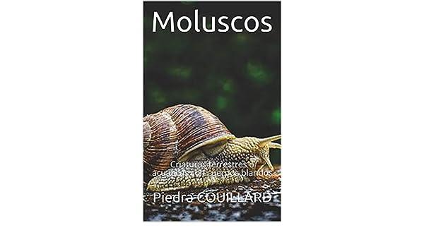 Moluscos: Criaturas terrestres o acuáticas con cuerpos blandos (Spanish Edition), Piedra COUILLARD - Amazon.com