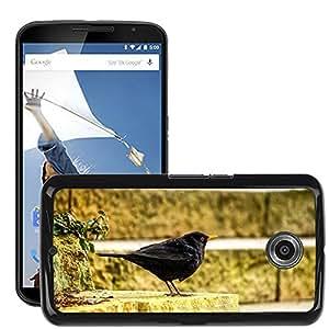 Hot Style Cell Phone PC Hard Case Cover // M00109437 Stairs Blackbird Black Animal Bird // LG Google Nexus 6