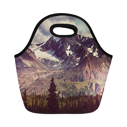 Semtomn Lunch Tote Bag Mountain Landscapes on Denali Highway Alaska Nature Forest Hike Reusable Neoprene Insulated Thermal Outdoor Picnic Lunchbox for Men Women